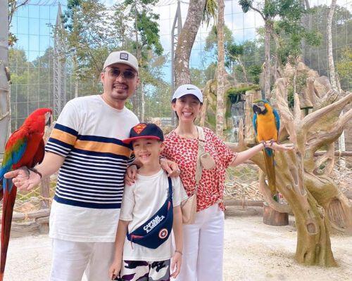 Khám phá những trải nghiệm về với thiên nhiên, động vật hoang dã tại 3 vườn thú Safari lớn nhất Việt Nam